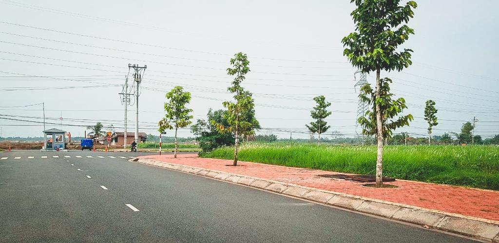 Đường xá trong dự án Millennia City