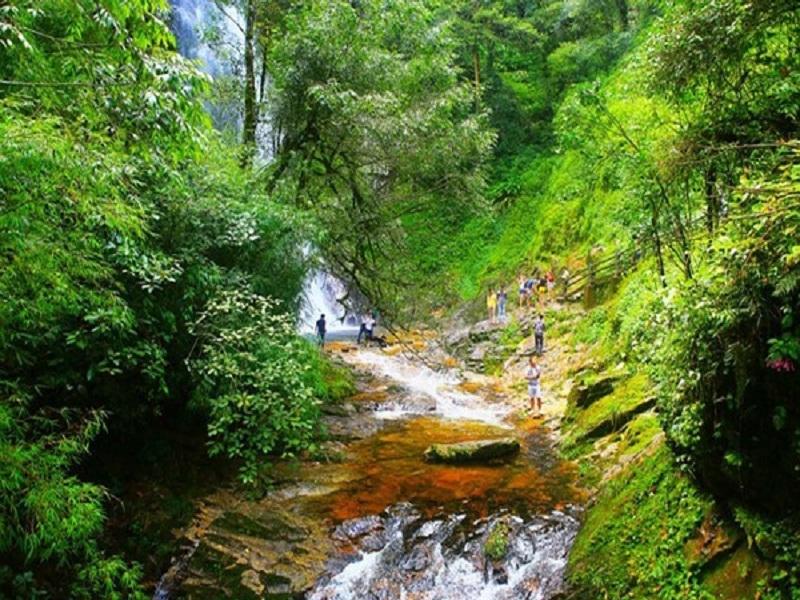Đô thị sinh thái 70% rừng